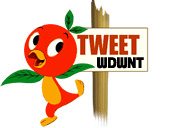 Little Orange Bird Tweeting